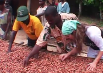 What is Fair Trade chocolate?